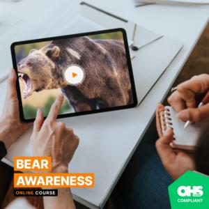 bear awareness training